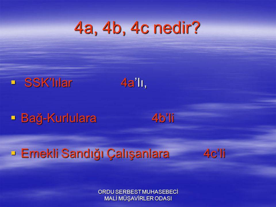 ORDU SERBEST MUHASEBECİ MALİ MÜŞAVİRLER ODASI 4a, 4b, 4c nedir.
