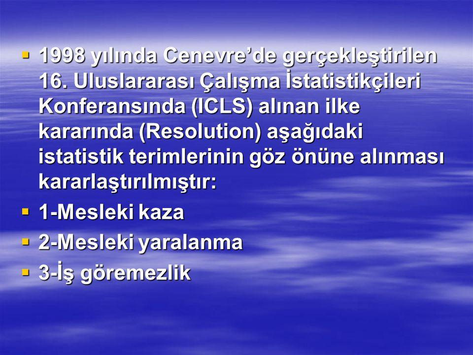  1998 yılında Cenevre'de gerçekleştirilen 16. Uluslararası Çalışma İstatistikçileri Konferansında (ICLS) alınan ilke kararında (Resolution) aşağıdaki