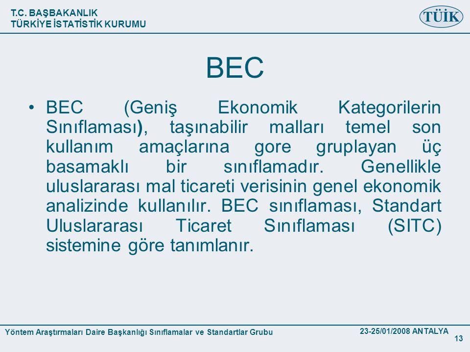 T.C. BAŞBAKANLIK TÜRKİYE İSTATİSTİK KURUMU Yöntem Araştırmaları Daire Başkanlığı Sınıflamalar ve Standartlar Grubu 23-25/01/2008 ANTALYA 13 BEC •BEC (