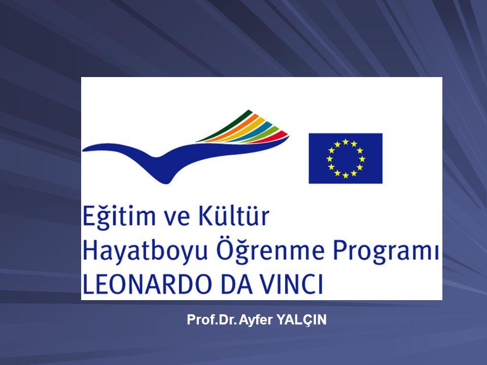 Prof.Dr. Ayfer YALÇIN
