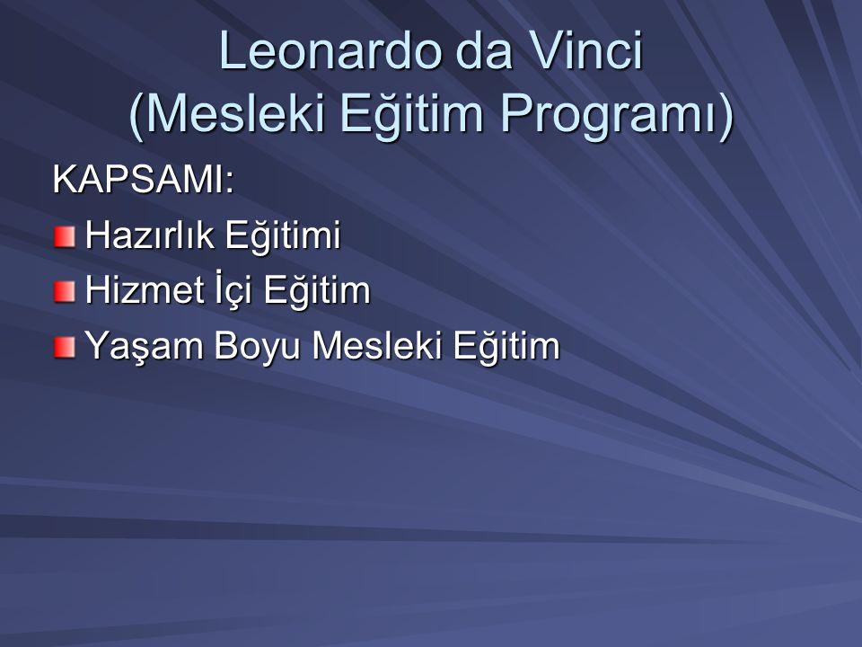 Leonardo da Vinci (Mesleki Eğitim Programı) KAPSAMI: Hazırlık Eğitimi Hizmet İçi Eğitim Yaşam Boyu Mesleki Eğitim