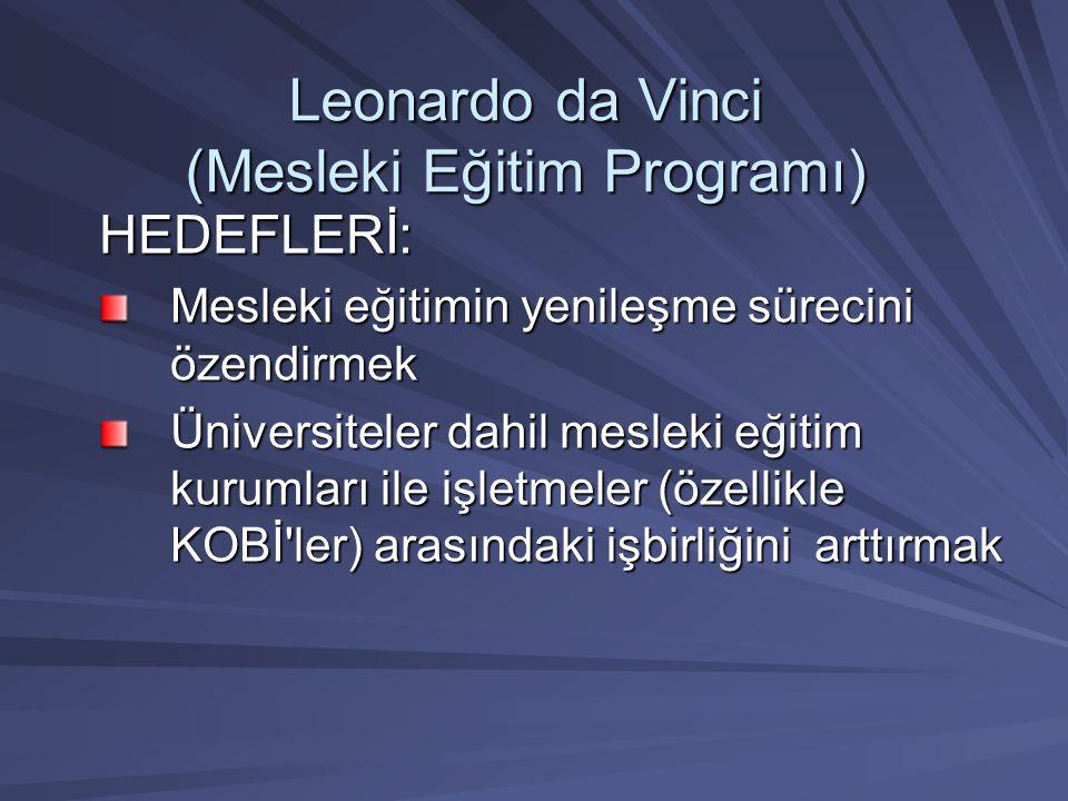 Leonardo da Vinci (Mesleki Eğitim Programı) HEDEFLERİ: Mesleki eğitimin yenileşme sürecini özendirmek Üniversiteler dahil mesleki eğitim kurumları ile