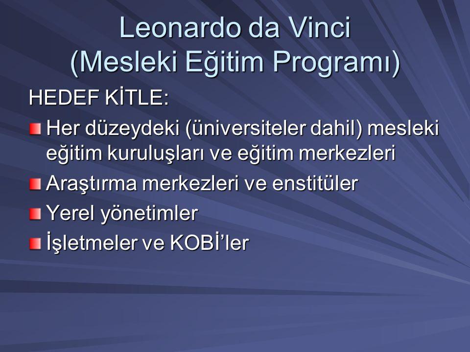 Leonardo da Vinci (Mesleki Eğitim Programı) HEDEF KİTLE: Her düzeydeki (üniversiteler dahil) mesleki eğitim kuruluşları ve eğitim merkezleri Araştırma