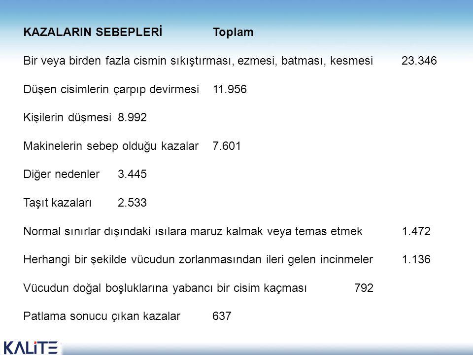 KAZALARIN SEBEPLERİ Toplam Bir veya birden fazla cismin sıkıştırması, ezmesi, batması, kesmesi 23.346 Düşen cisimlerin çarpıp devirmesi 11.956 Kişiler