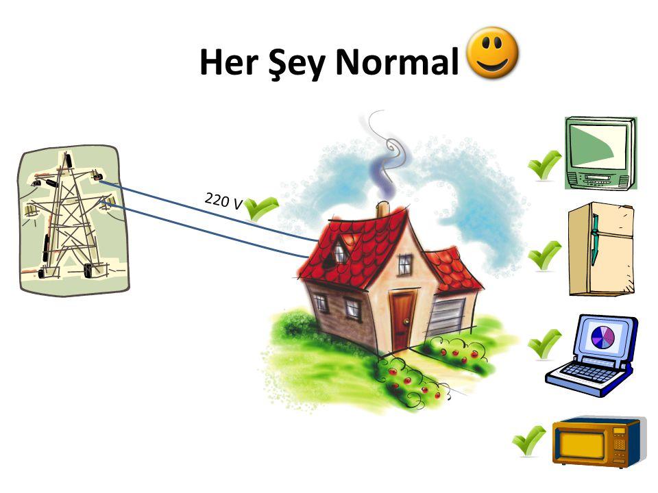 Evinizde yüksek voltaja karşı korumanız var mı?