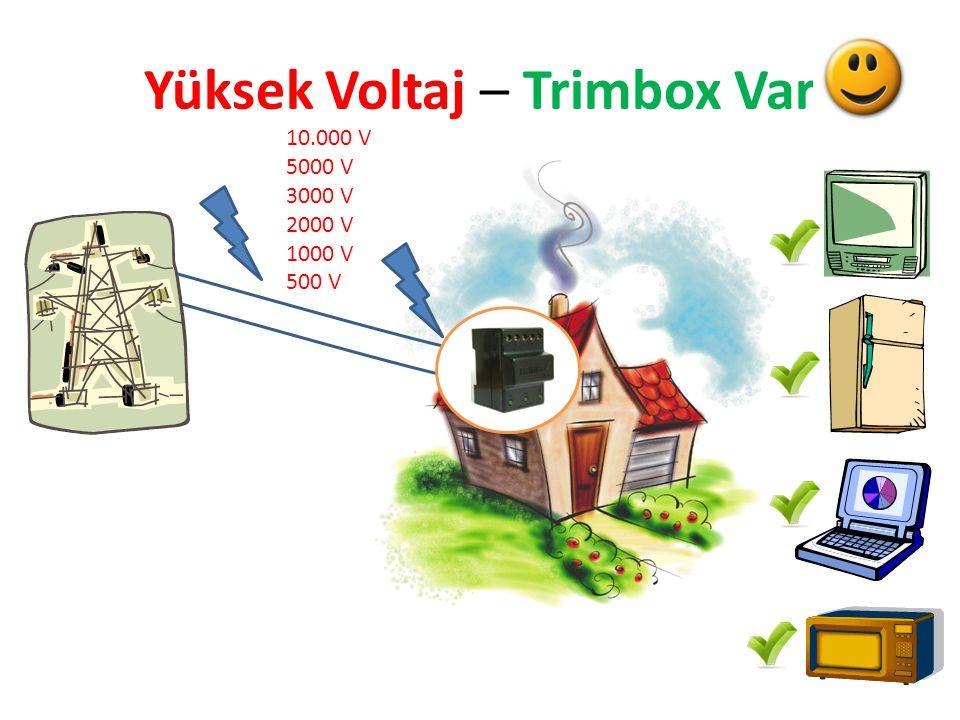 Yüksek Voltaj – Trimbox Yok 10.000 V 5000 V 3000 V 2000 V 1000 V 500 V