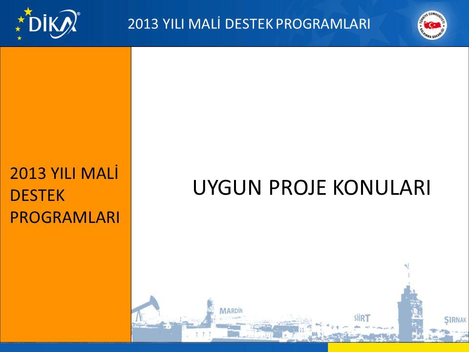 UYGUN PROJE KONULARI 2013 YILI MALİ DESTEK PROGRAMLARI