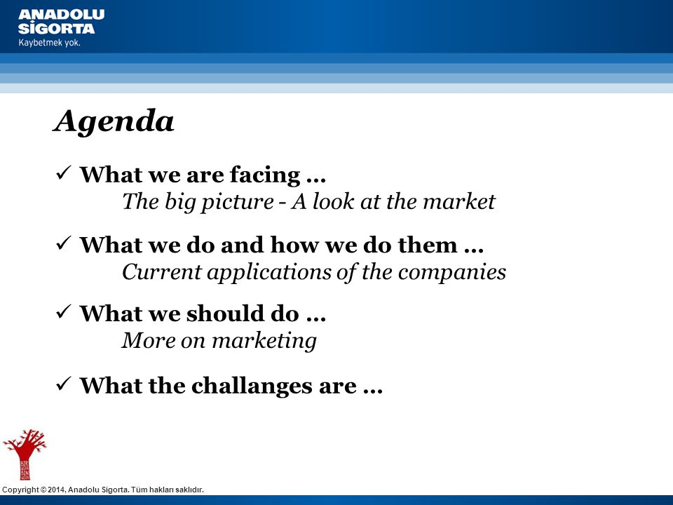 Copyright © 2014, Anadolu Sigorta. Tüm hakları saklıdır. Agenda  What we are facing … The big picture - A look at the market  What we do and how we