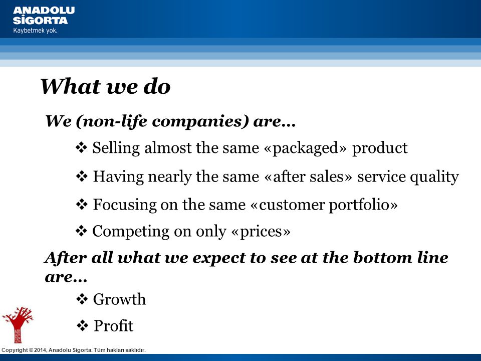 Copyright © 2014, Anadolu Sigorta. Tüm hakları saklıdır. What we do  Selling almost the same «packaged» product  Focusing on the same «customer port