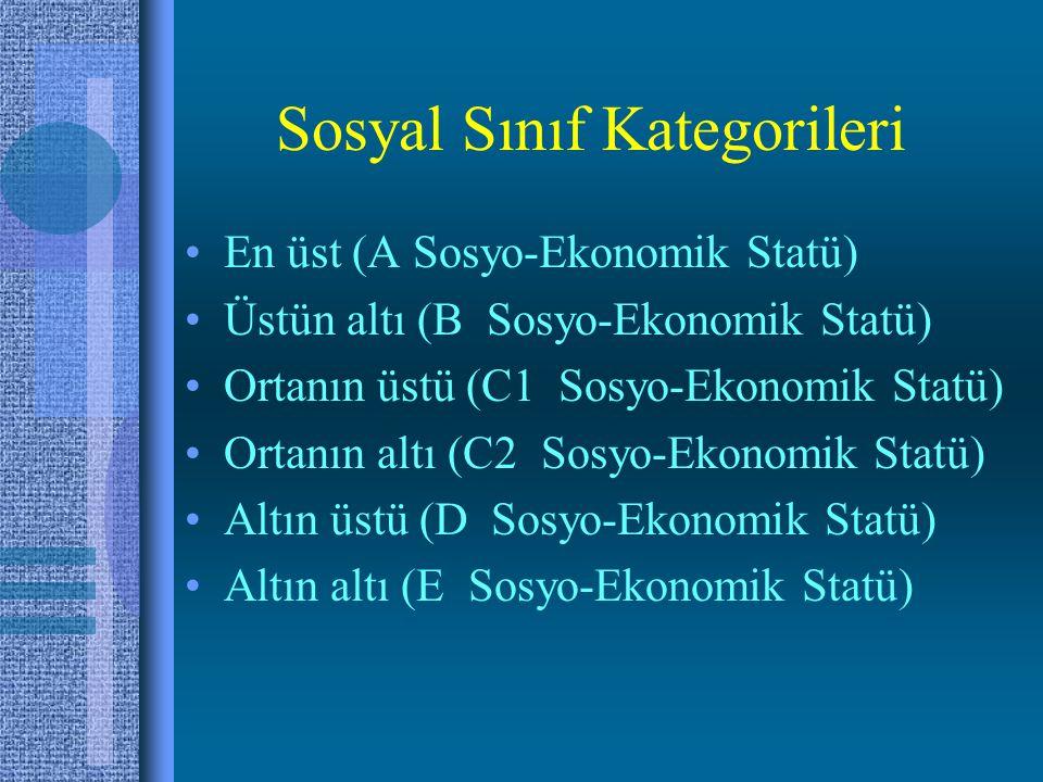 Sosyal Sınıf Kategorileri •En üst (A Sosyo-Ekonomik Statü) •Üstün altı (B Sosyo-Ekonomik Statü) •Ortanın üstü (C1 Sosyo-Ekonomik Statü) •Ortanın altı (C2 Sosyo-Ekonomik Statü) •Altın üstü (D Sosyo-Ekonomik Statü) •Altın altı (E Sosyo-Ekonomik Statü)