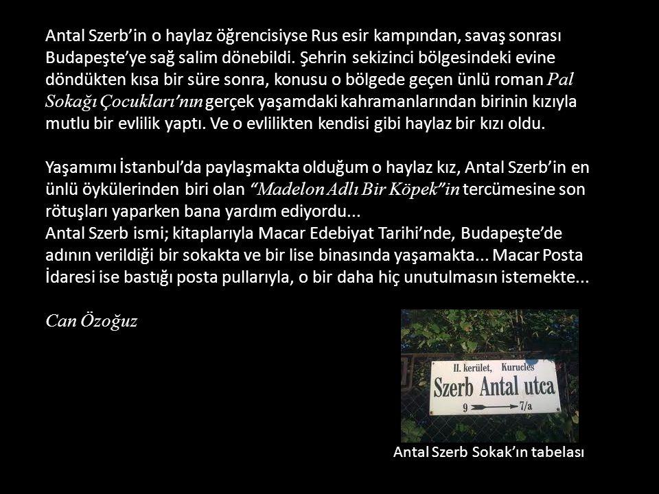 Bu satırları yazan öğretmen, edebiyat profesörü Antal Szerb'di. Szerb, 20. yüzyıl Macar Edebiyatının en önemli yazarlarından biri olarak kabul edilir.
