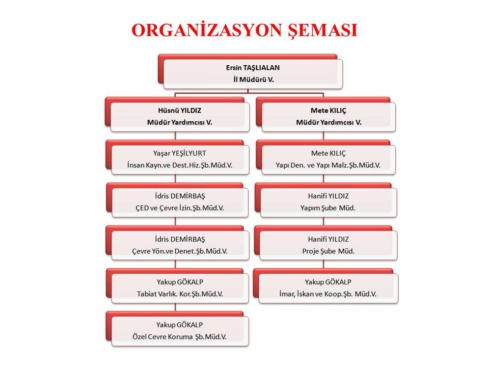 ORGANİZASYON ŞEMASI.