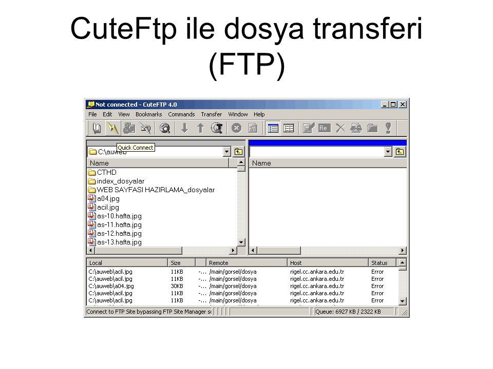 CuteFtp ile dosya transferi (FTP)
