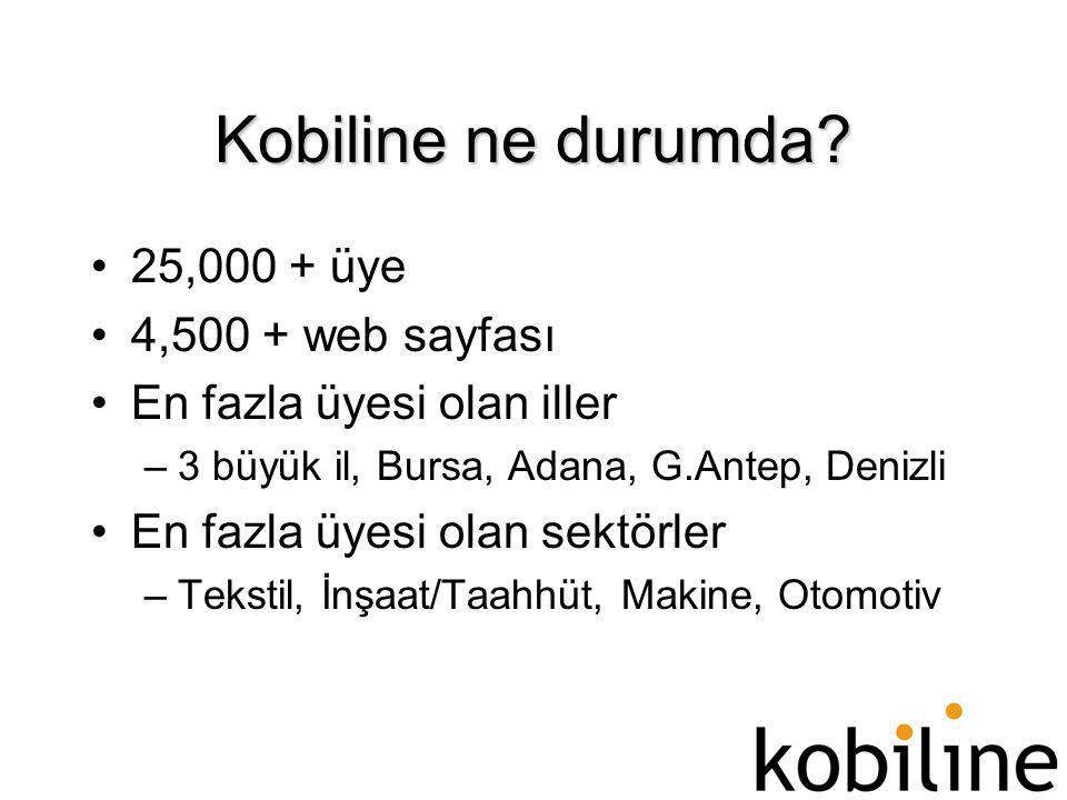 Kobiline ne durumda? •25,000 + üye •4,500 + web sayfası •En fazla üyesi olan iller –3 büyük il, Bursa, Adana, G.Antep, Denizli •En fazla üyesi olan se