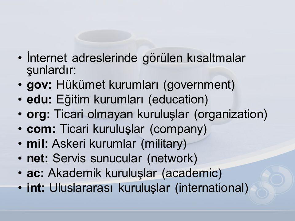 •İnternet adreslerinde görülen kısaltmalar şunlardır: •gov: Hükümet kurumları (government) •edu: Eğitim kurumları (education) •org: Ticari olmayan kur
