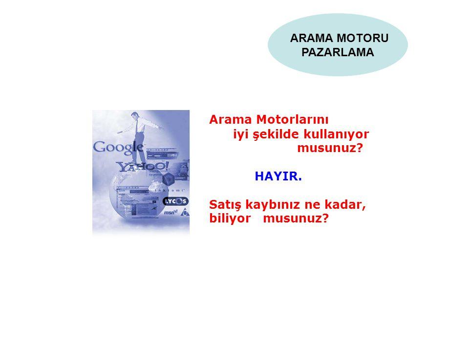 ARAMA MOTORU PAZARLAMA Arama Motorlarını iyi şekilde kullanıyor musunuz? HAYIR. Satış kaybınız ne kadar, biliyor musunuz?