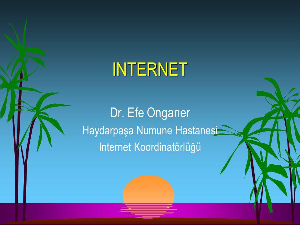Dr. Efe Onganer Haydarpaşa Numune Hastanesi Internet Koordinatörlüğü INTERNET