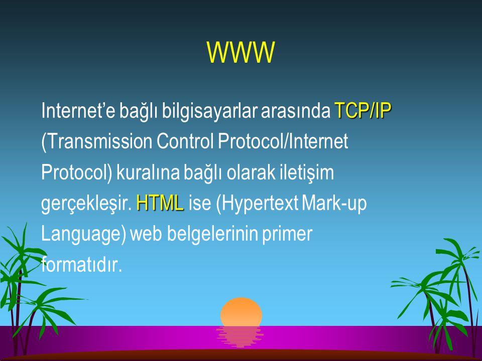 WWW TCP/IP Internet'e bağlı bilgisayarlar arasında TCP/IP (Transmission Control Protocol/Internet Protocol) kuralına bağlı olarak iletişim HTML gerçek