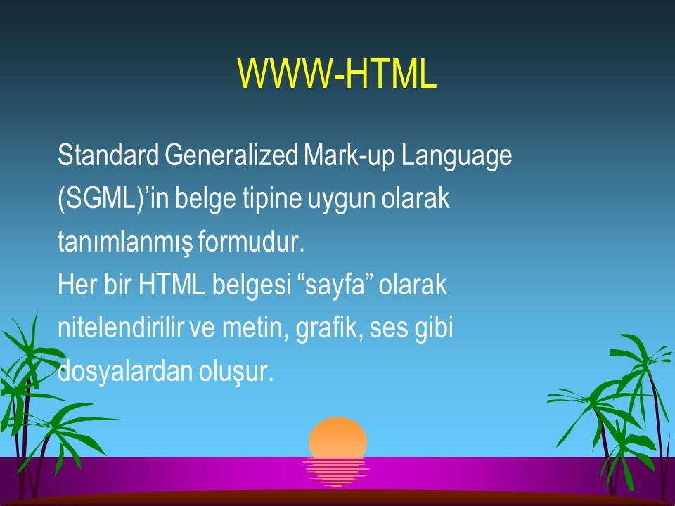 """WWW-HTML Standard Generalized Mark-up Language (SGML)'in belge tipine uygun olarak tanımlanmış formudur. Her bir HTML belgesi """"sayfa"""" olarak nitelendi"""