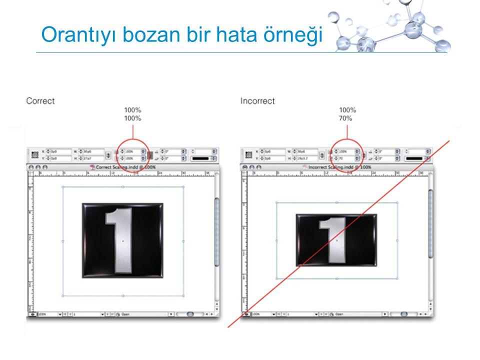 Proprietary5 Orantıyı bozan bir hata örneği