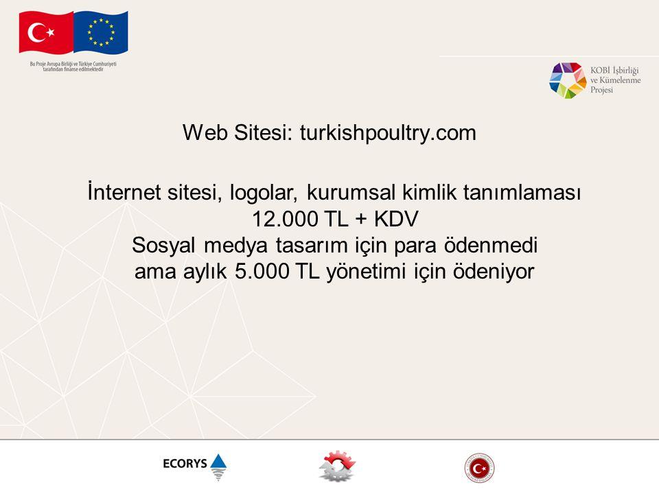 Web Sitesi: turkishpoultry.com İnternet sitesi, logolar, kurumsal kimlik tanımlaması 12.000 TL + KDV Sosyal medya tasarım için para ödenmedi ama aylık