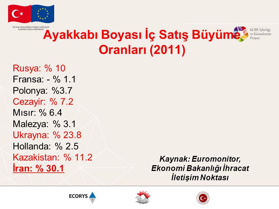 Ayakkabı Boyası İç Satış Büyüme Oranları (2011) Rusya: % 10 Fransa: - % 1.1 Polonya: %3.7 Cezayir: % 7.2 Mısır: % 6.4 Malezya: % 3.1 Ukrayna: % 23.8 H