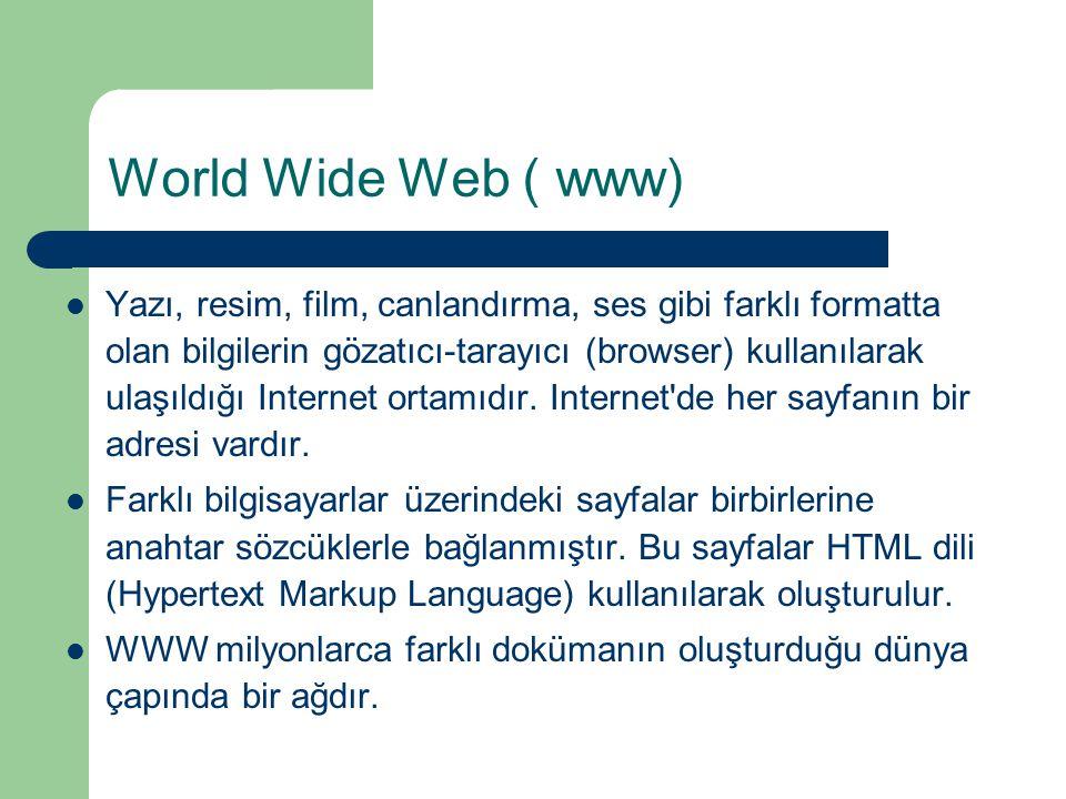 World Wide Web ( www)  Yazı, resim, film, canlandırma, ses gibi farklı formatta olan bilgilerin gözatıcı-tarayıcı (browser) kullanılarak ulaşıldığı Internet ortamıdır.