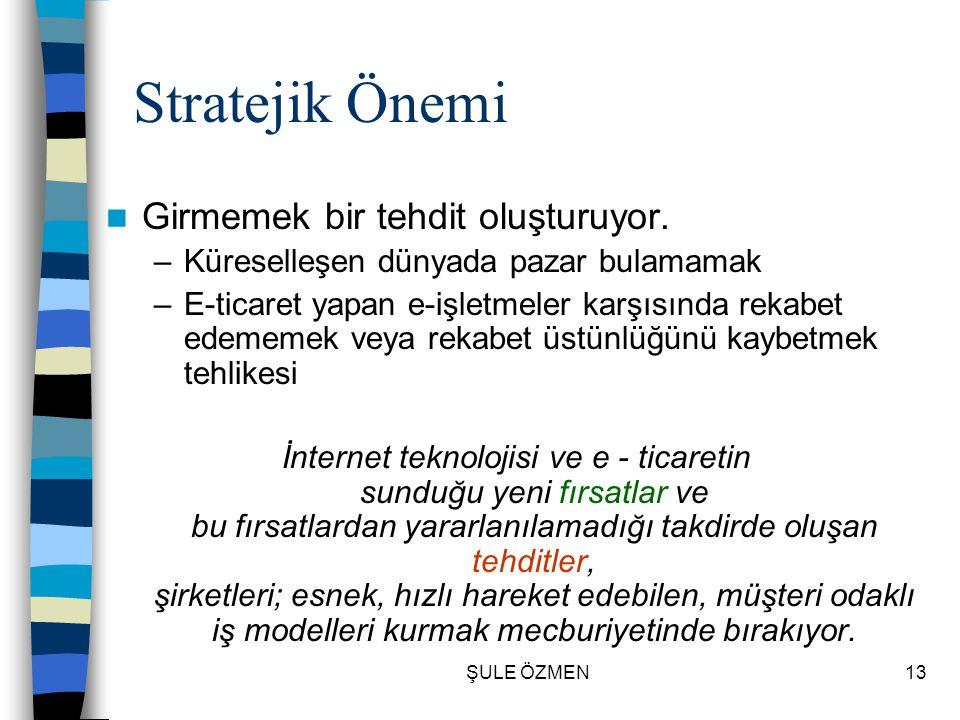 ŞULE ÖZMEN12 Stratejik Önemi  İnternet-extranet-intranet ticaret ve diğer işletme faaliyetleri için işletmeye güç katan, beceri kazandıran ortamlar s