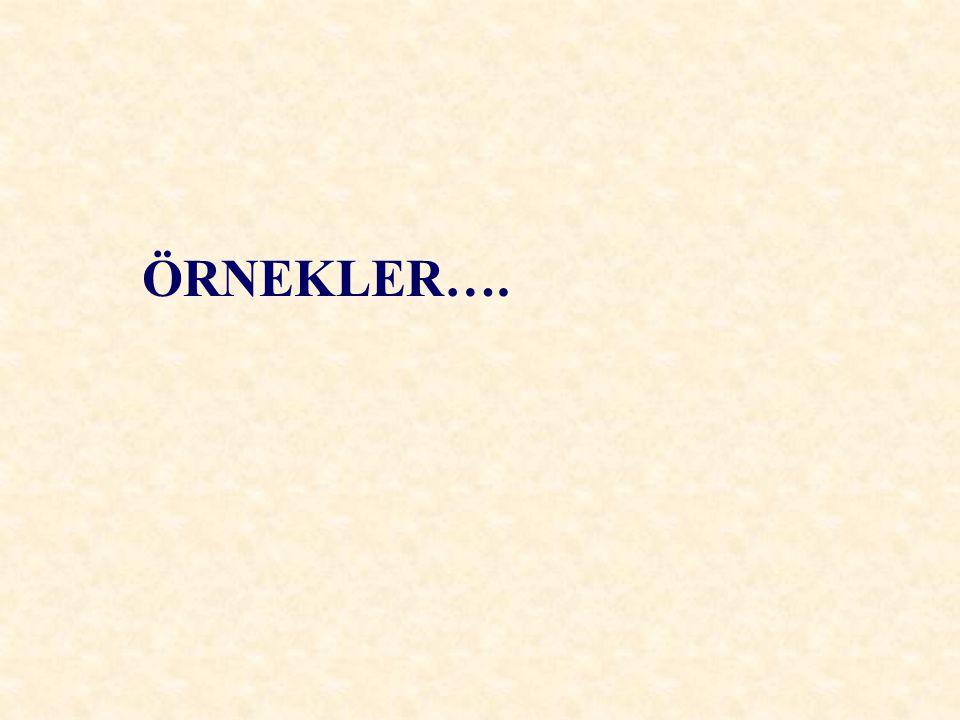 ÖRNEKLER….