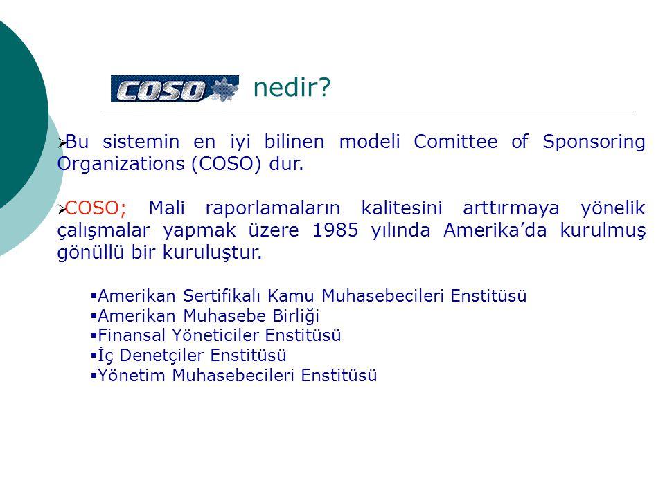  Bu sistemin en iyi bilinen modeli Comittee of Sponsoring Organizations (COSO) dur.  COSO; Mali raporlamaların kalitesini arttırmaya yönelik çalışma