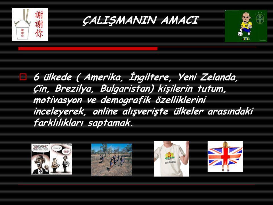 ÇALIŞMANIN AMACI  6 ülkede ( Amerika, İngiltere, Yeni Zelanda, Çin, Brezilya, Bulgaristan) kişilerin tutum, motivasyon ve demografik özelliklerini in