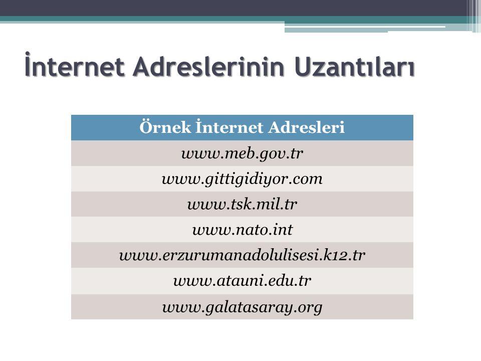 İnternet Adreslerinin Uzantıları Örnek İnternet Adresleri www.meb.gov.tr www.gittigidiyor.com www.tsk.mil.tr www.nato.int www.erzurumanadolulisesi.k12