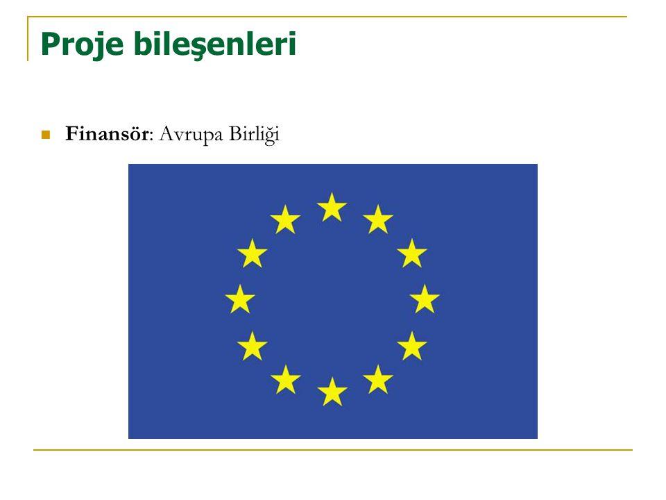 Proje bileşenleri  Finansör: Avrupa Birliği