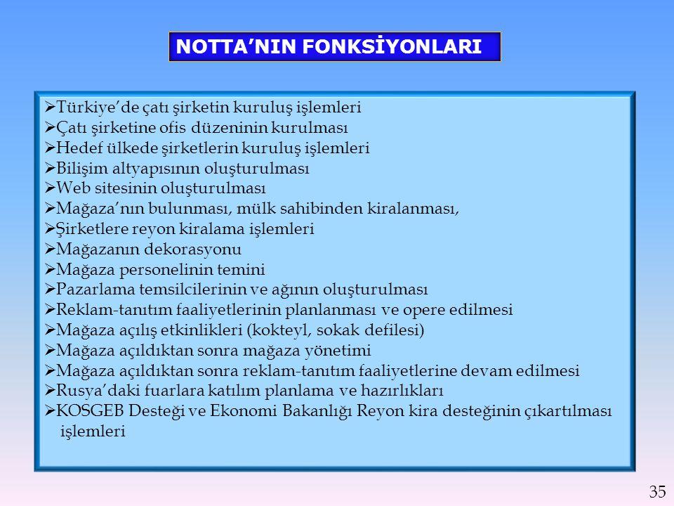  Türkiye'de çatı şirketin kuruluş işlemleri  Çatı şirketine ofis düzeninin kurulması  Hedef ülkede şirketlerin kuruluş işlemleri  Bilişim altyapıs