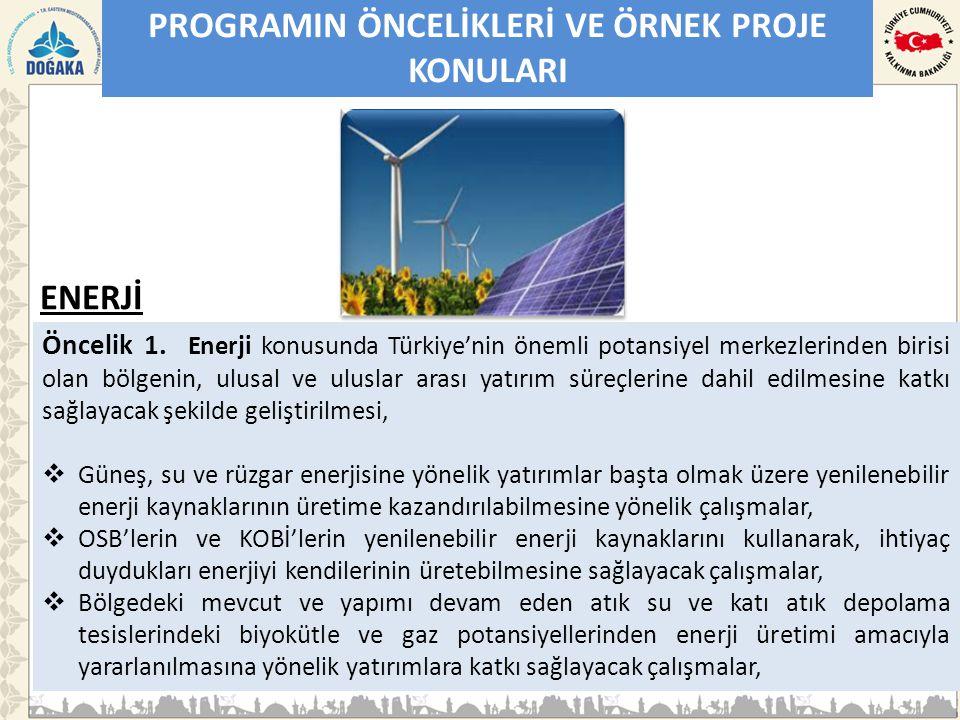 PROGRAMIN ÖNCELİKLERİ VE ÖRNEK PROJE KONULARI Öncelik 1. Enerji konusunda Türkiye'nin önemli potansiyel merkezlerinden birisi olan bölgenin, ulusal ve