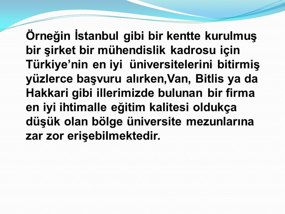 Örneğin İstanbul gibi bir kentte kurulmuş bir şirket bir mühendislik kadrosu için Türkiye'nin en iyi üniversitelerini bitirmiş yüzlerce başvuru alırken,Van, Bitlis ya da Hakkari gibi illerimizde bulunan bir firma en iyi ihtimalle eğitim kalitesi oldukça düşük olan bölge üniversite mezunlarına zar zor erişebilmektedir.