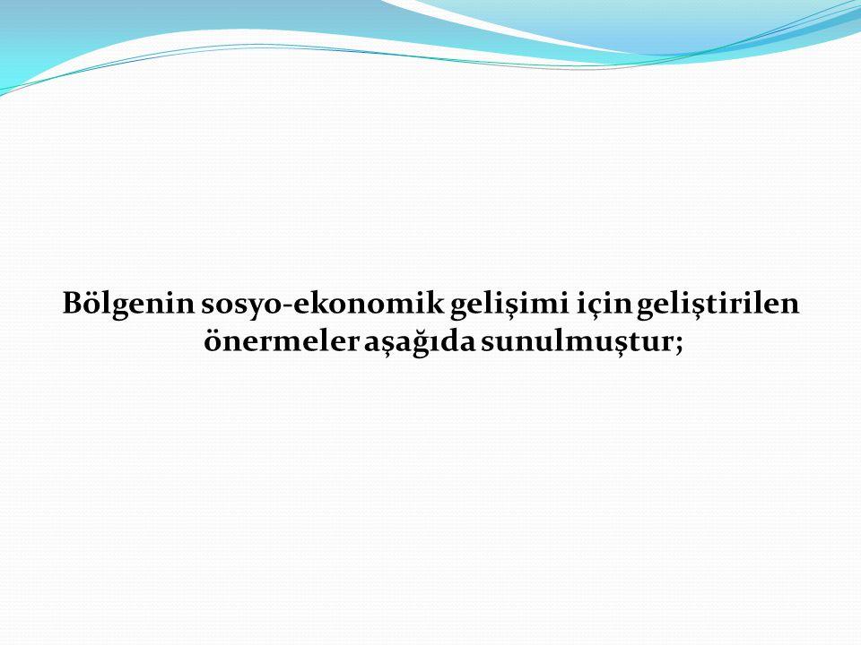 Bölgenin sosyo-ekonomik gelişimi için geliştirilen önermeler aşağıda sunulmuştur;