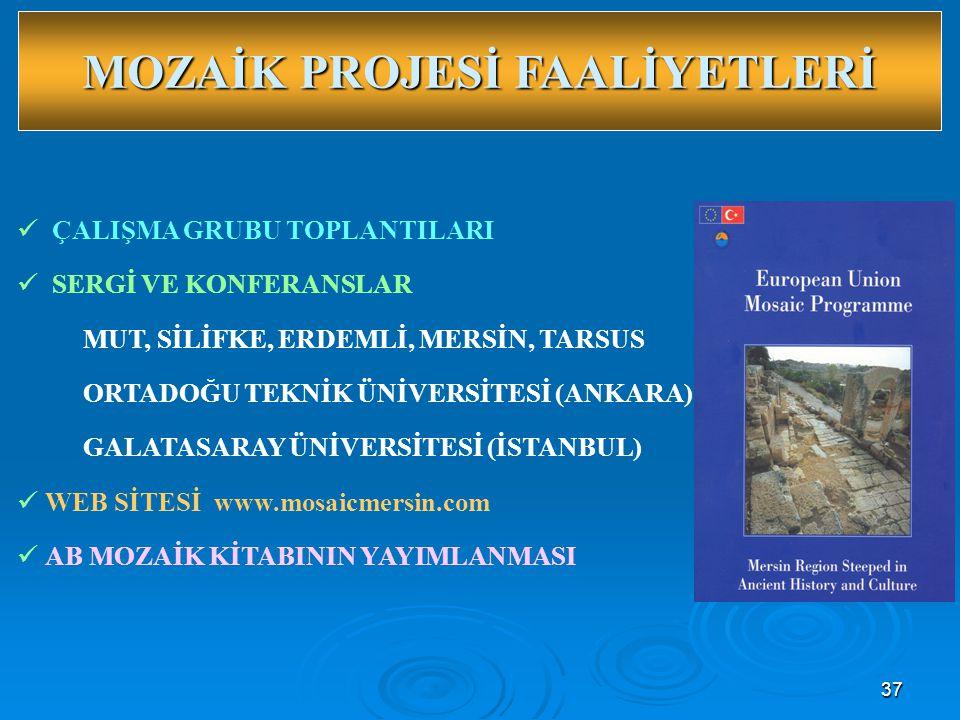 37  ÇALIŞMA GRUBU TOPLANTILARI  SERGİ VE KONFERANSLAR MUT, SİLİFKE, ERDEMLİ, MERSİN, TARSUS ORTADOĞU TEKNİK ÜNİVERSİTESİ (ANKARA) GALATASARAY ÜNİVERSİTESİ (İSTANBUL)  WEB SİTESİ www.mosaicmersin.com  AB MOZAİK KİTABININ YAYIMLANMASI MOZAİK PROJESİ FAALİYETLERİ