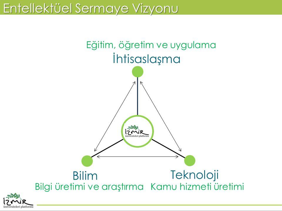 Entellektüel Sermaye Vizyonu Eğitim, öğretim ve uygulama Kamu hizmeti üretimi Bilgi üretimi ve araştırma Bilim Teknoloji İhtisaslaşma