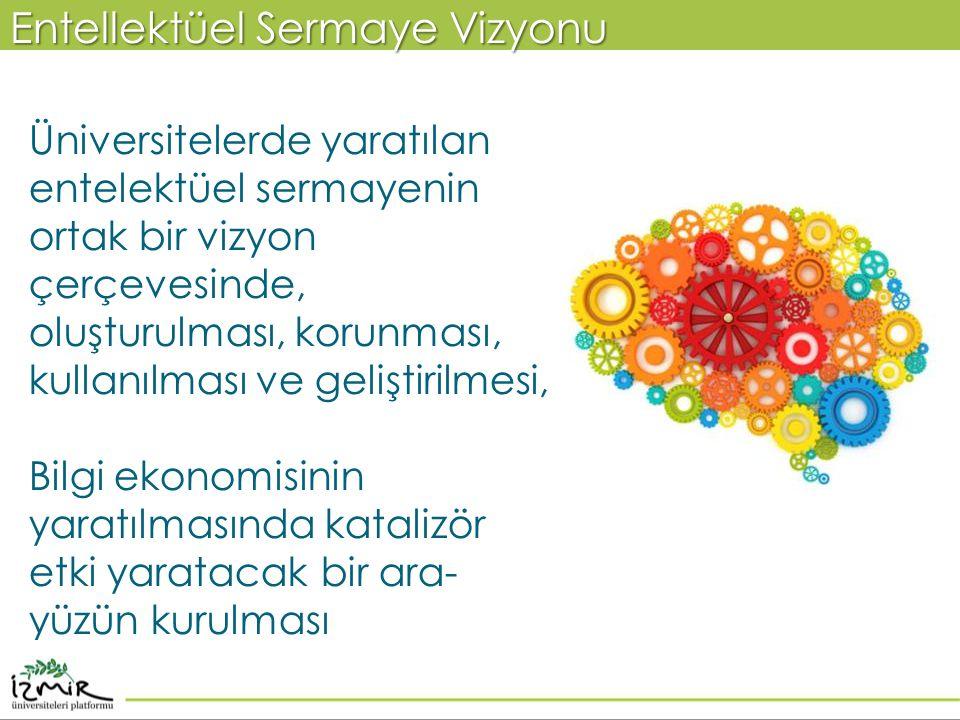 Üniversitelerde yaratılan entelektüel sermayenin ortak bir vizyon çerçevesinde, oluşturulması, korunması, kullanılması ve geliştirilmesi, Bilgi ekonom