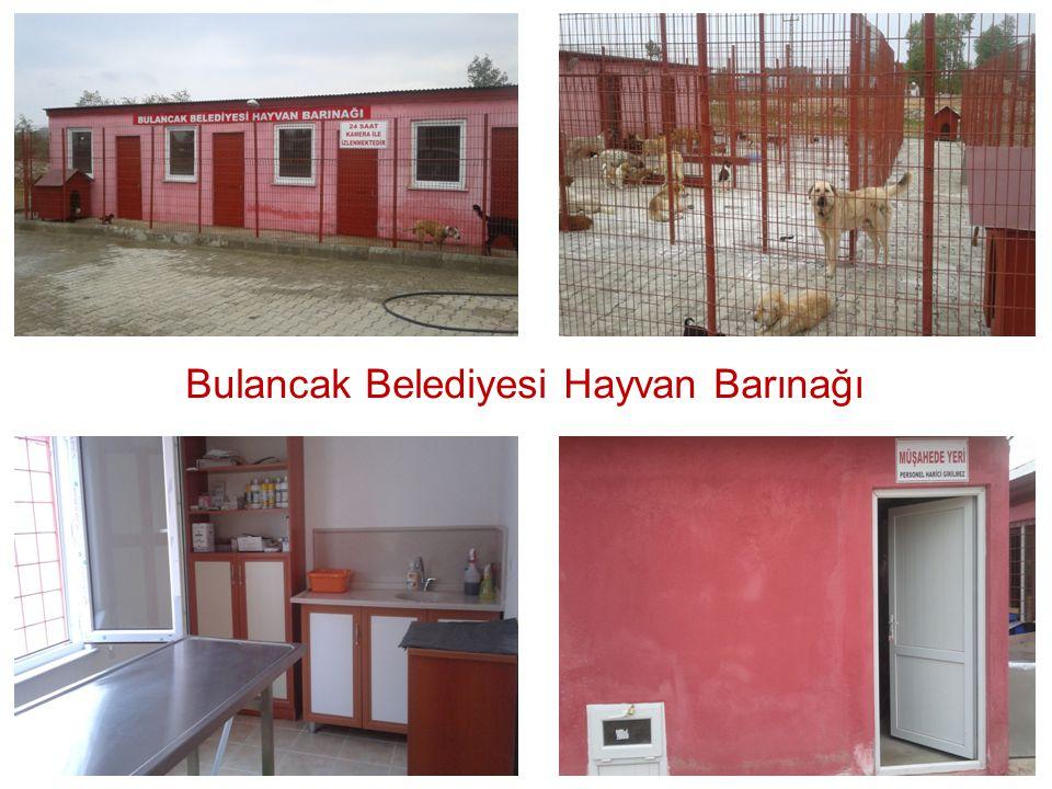 Bulancak Belediyesi Hayvan Barınağı