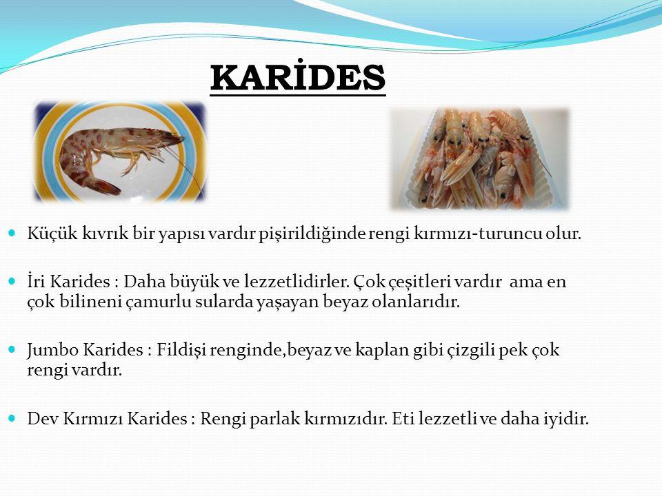 KARİDES  Küçük kıvrık bir yapısı vardır pişirildiğinde rengi kırmızı-turuncu olur.  İri Karides : Daha büyük ve lezzetlidirler. Çok çeşitleri vardır