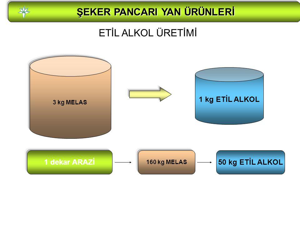 ŞEKER PANCARI YAN ÜRÜNLERİ ŞEKER PANCARI YAN ÜRÜNLERİ ETİL ALKOL ÜRETİMİ 3 kg MELAS 1 kg ETİL ALKOL 1 dekar ARAZİ 160 kg MELAS 50 kg ETİL ALKOL