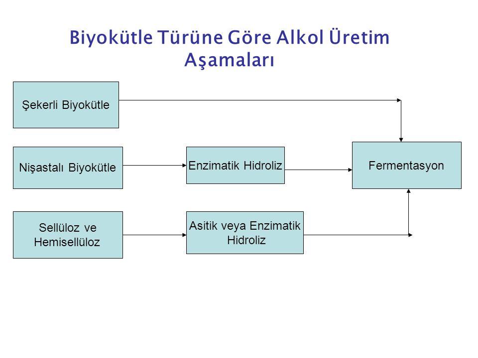 Şekerli Biyokütle Nişastalı Biyokütle Sellüloz ve Hemisellüloz Enzimatik Hidroliz Asitik veya Enzimatik Hidroliz Fermentasyon Biyokütle Türüne Göre Alkol Üretim Aşamaları