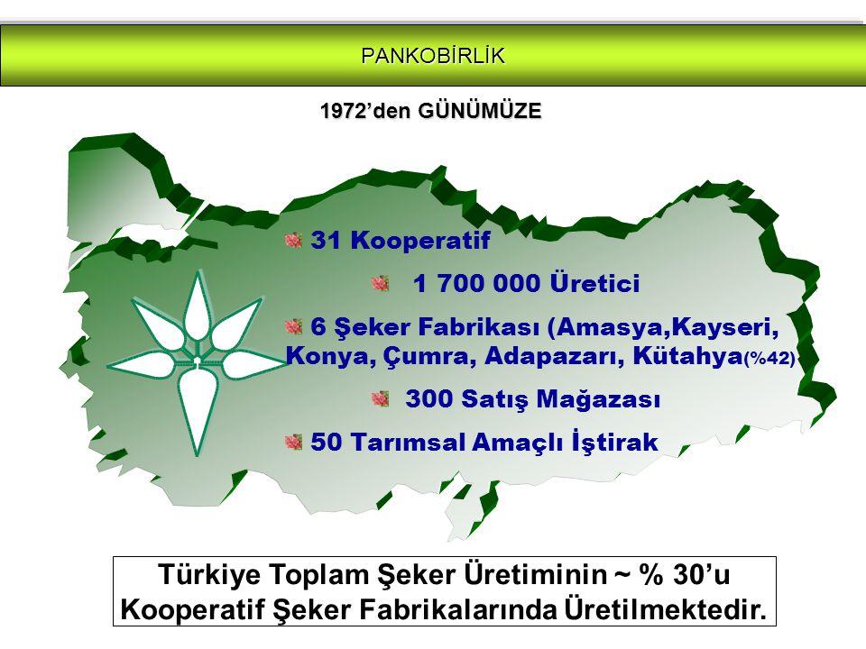 PANKOBİRLİK 31 Kooperatif 1 700 000 Üretici 6 Şeker Fabrikası (Amasya,Kayseri, Konya, Çumra, Adapazarı, Kütahya (%42) 300 Satış Mağazası 50 Tarımsal Amaçlı İştirak Türkiye Toplam Şeker Üretiminin ~ % 30'u Kooperatif Şeker Fabrikalarında Üretilmektedir.