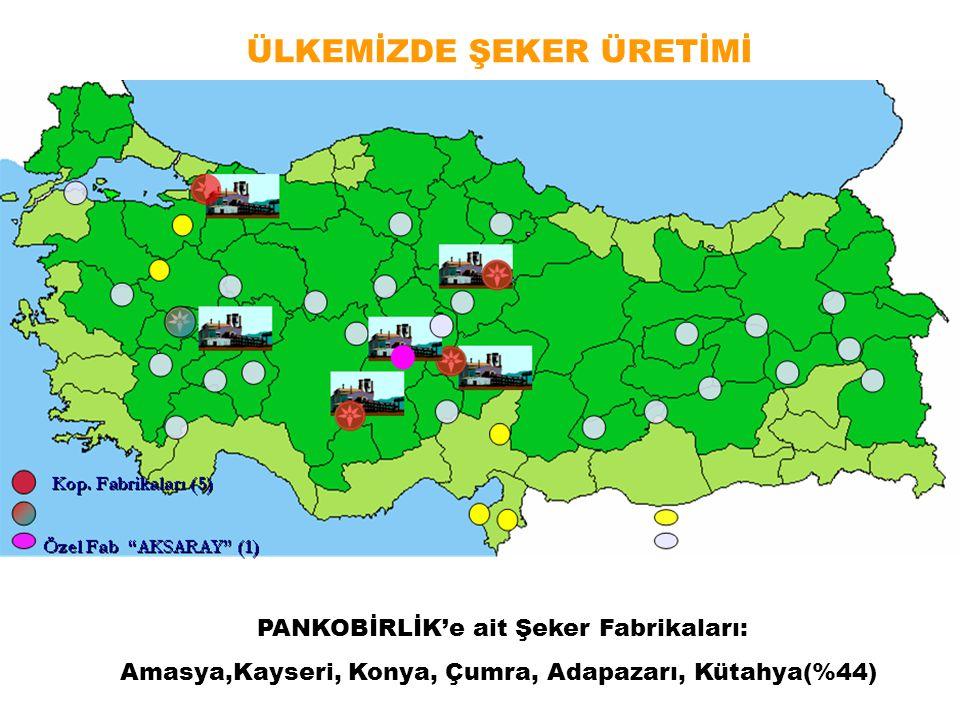ÜLKEMİZDE ŞEKER ÜRETİMİ PANKOBİRLİK'e ait Şeker Fabrikaları: Amasya,Kayseri, Konya, Çumra, Adapazarı, Kütahya(%44)