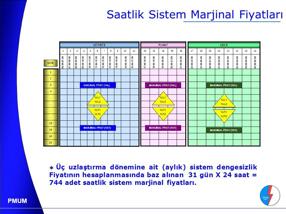 PMUM Saatlik Sistem Marjinal Fiyatları GÜNDÜZ 1234567891011 06:00-07:0007:00-08:0008:00-09:0009:00-10:0010:00-11:0011:00-12:0012:00-13:0013:00-14:0014:00-15:0015:00-16:0016:00-17:00 17:00-18:0018:00-19:0019:00-20:0020:00-21:00 21:00-22:00 22:00-23:0023:00-00:0000:00-01:0001:00-02:0002:00-03:0003:00-04:0004:00-05:0005:00-06:00 PUANT 1213141516 GECE 1718192021222324 1 2 3 4 … … … … 28 29 30 31 YAL1 YAL2 YAT1 YAT2 YAL1 YAL2 YAT1 YAT2 YAL1 YAL2 YAT1 YAT2 MARJİNAL FİYAT (YAL) MARJİNAL FİYAT (YAT) GÜN  Üç uzlaştırma dönemine ait (aylık) sistem dengesizlik Fiyatının hesaplanmasında baz alınan 31 gün X 24 saat = 744 adet saatlik sistem marjinal fiyatları.