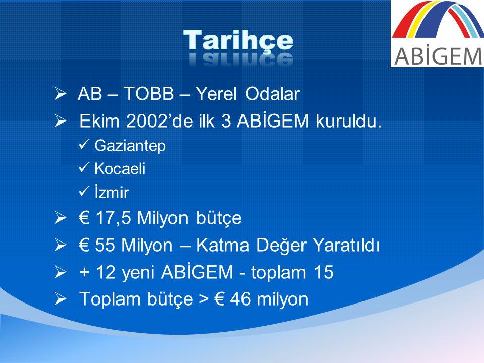  AB – TOBB – Yerel Odalar  Ekim 2002'de ilk 3 ABİGEM kuruldu.
