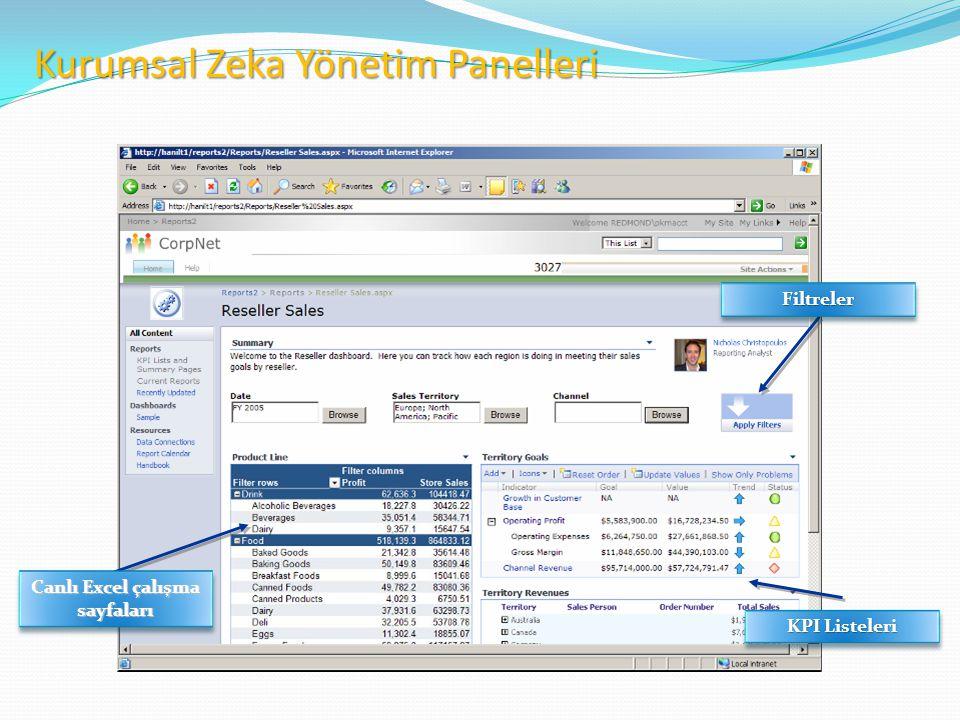 KPI Listeleri Canlı Excel çalışma sayfaları FiltrelerFiltreler Kurumsal Zeka Yönetim Panelleri