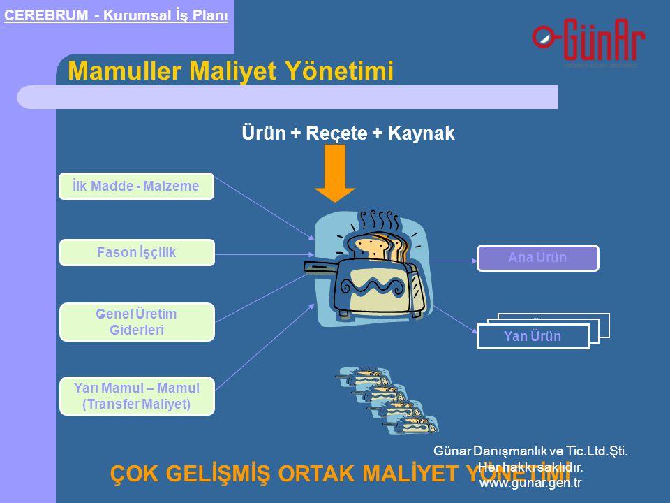 Yan Ürün Mamuller Maliyet Yönetimi Yan Ürün İlk Madde - Malzeme Fason İşçilik Genel Üretim Giderleri Yarı Mamul – Mamul (Transfer Maliyet) Ana Ürün Ür